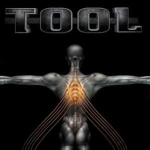 Tool - Salival