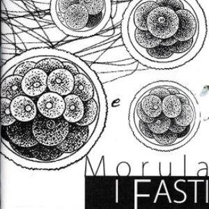 I Fasti - Morula