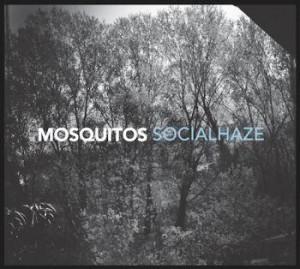 Mosquitos - Socialhaze
