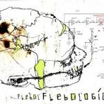 flebologic
