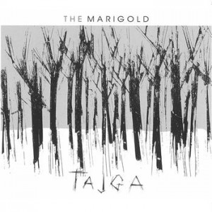 The Marigold - Tajga