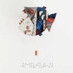 Blooming Iris - Amondawa