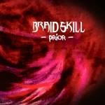 Braid Skill - Prior
