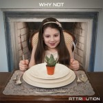 Attribution - Why Not