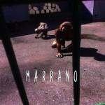 Marrano - Marrano