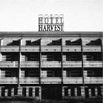 mr-furto-lady-paccottilla-hotel-harvest