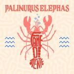 Palinurus Elephas - Fame Di Niente