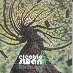 Electric Swan - Windblown rockgarage